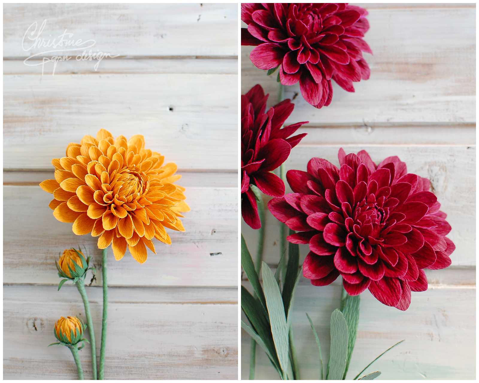 dahlias by Christinepaperdesign