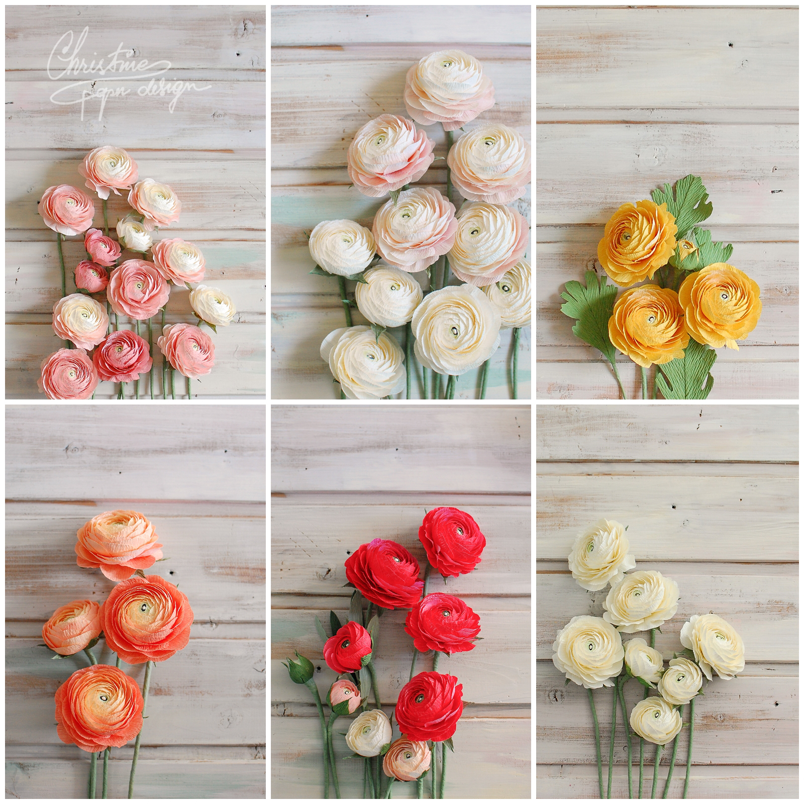 ranunculus by Christinepaperdesign